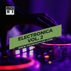 Electronica Vol. 2